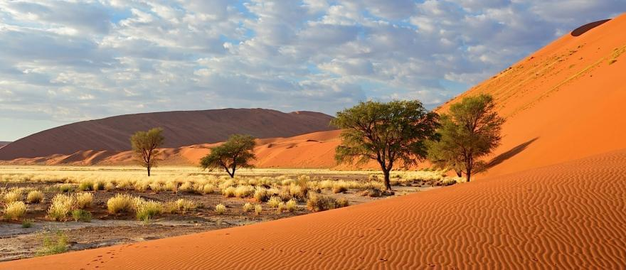 Great Namibian Trip for Families
