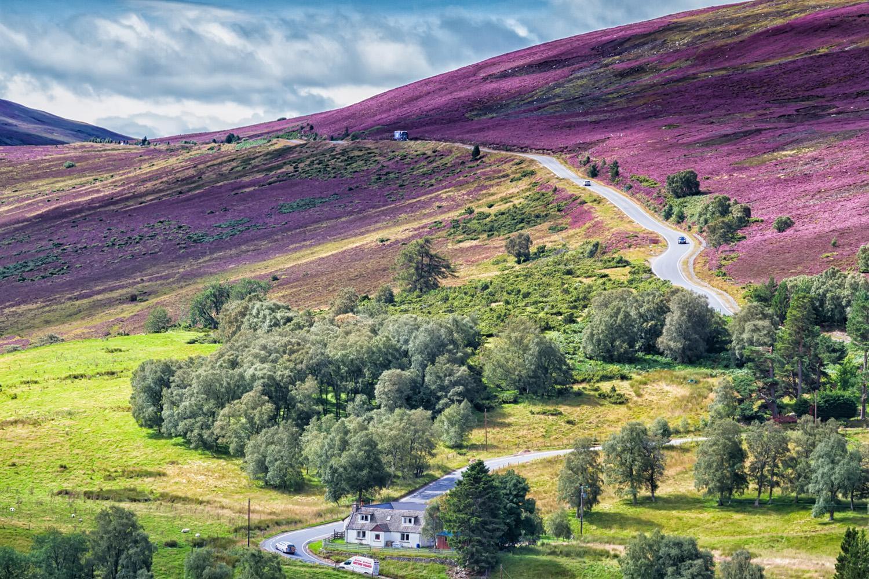 Travel Review: Superb Tour To Scotland