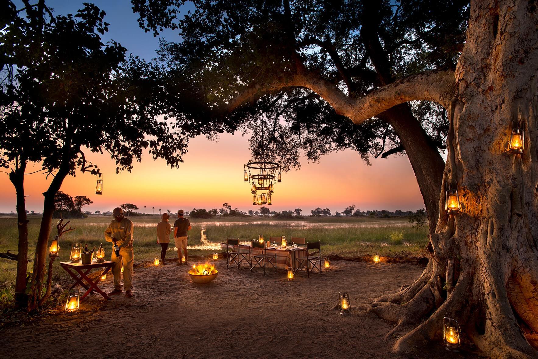 Travel Review: Best Botswana Tour