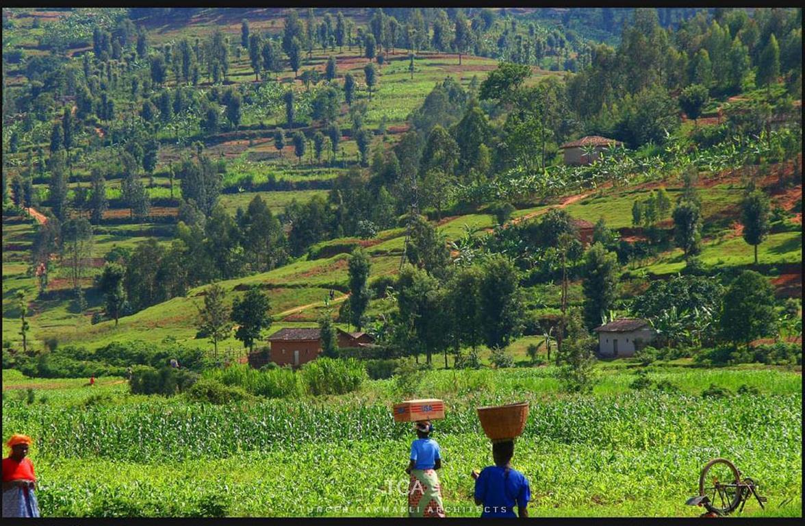 Travel Review: Best-priced Rwanda Tours