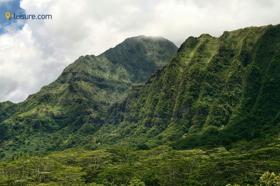 Hawaii45g