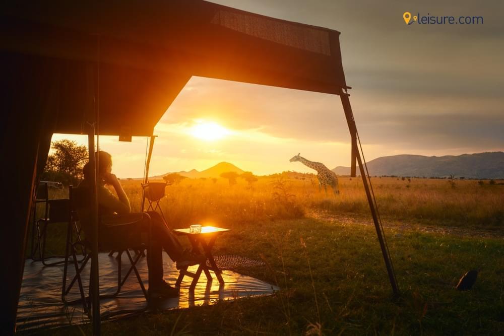 Tanzania Safari: Mandara Camping, Alpine Desert Hiking, Lake Manyara, Uhuru Peak