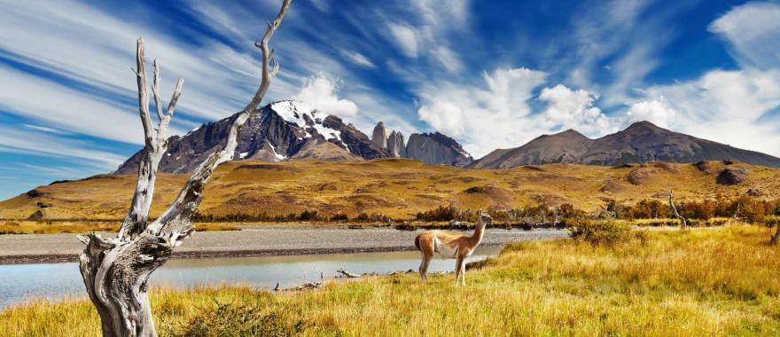 Santiago & Robertson Crusoe Island - An Amazing Chile Tour