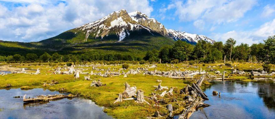 Santiago & W Trek Torres del Paine: Explore The Best Of Patagonia With This Latin America Journey