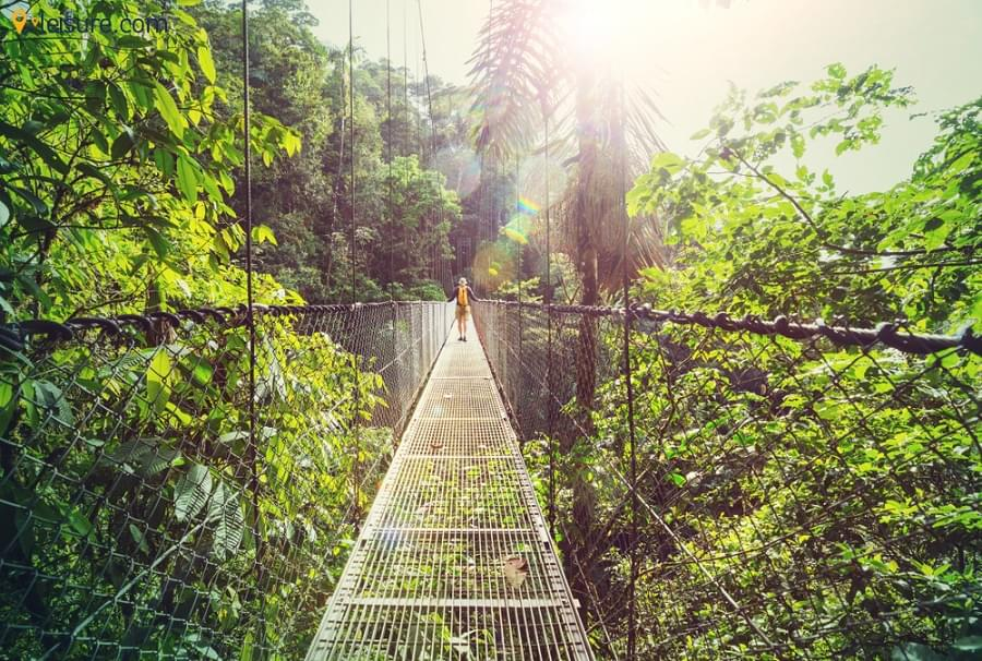 Costa Rica 7 days Itinerary for Your Wanderlust