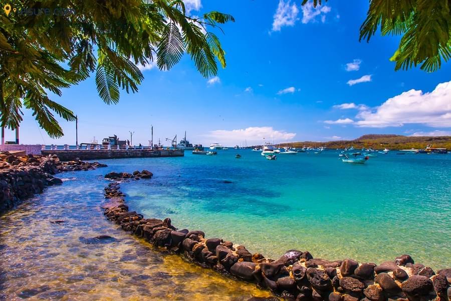 Ecuador & Galapagos Tours
