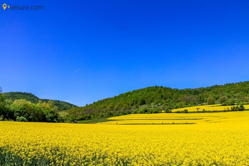 nature landsc