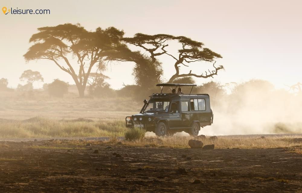 Kenya Safari Vacation j