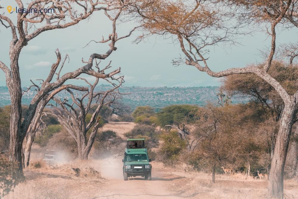 Lake Manyara, Tarangire, Serengeti