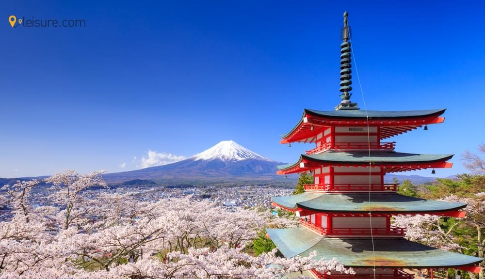 5 Best Things to Do on Jaw-Dropping Japan Tour