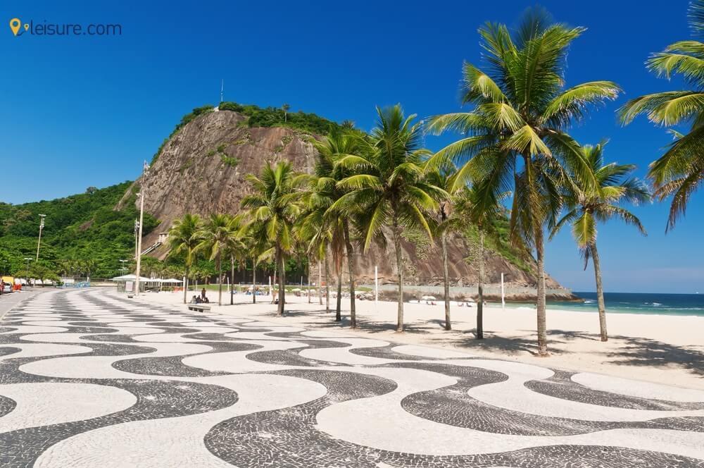 Janeiro & Amazon Rainforest  df