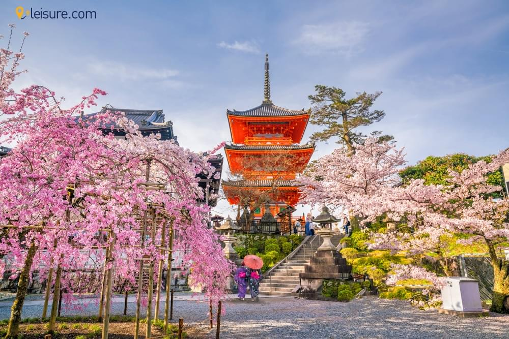 Culture and History of Japanv