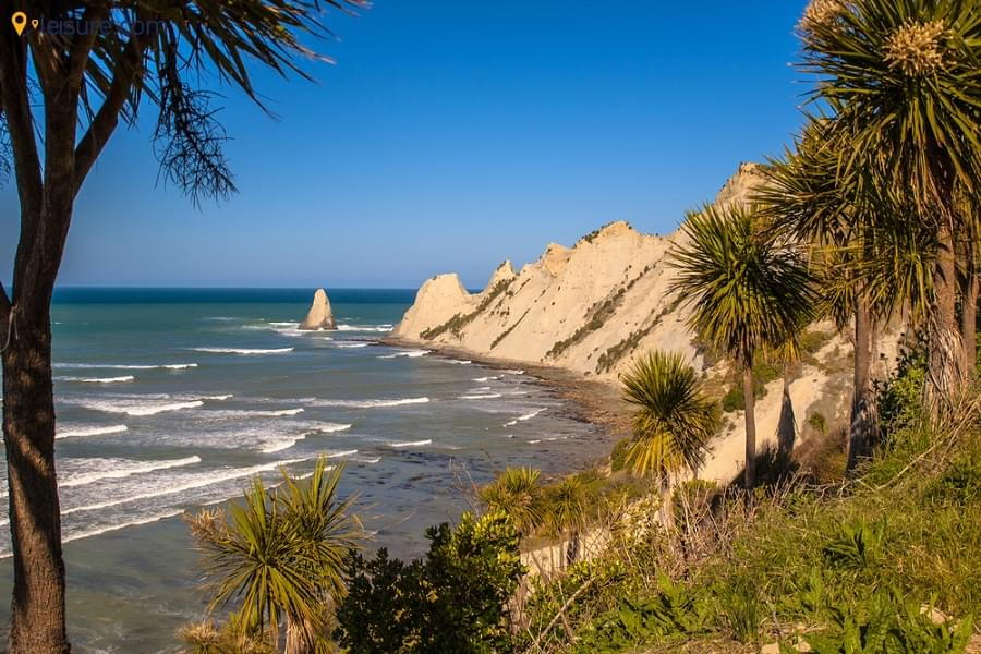 New Zealand Tour sf