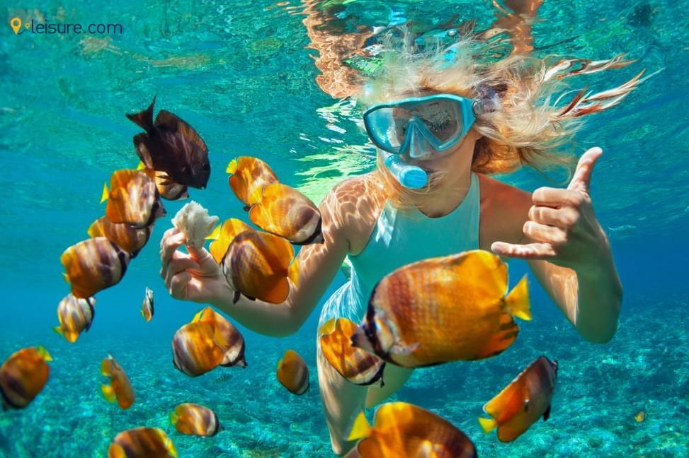 Travel Review: Fabulous Trip To  Australia