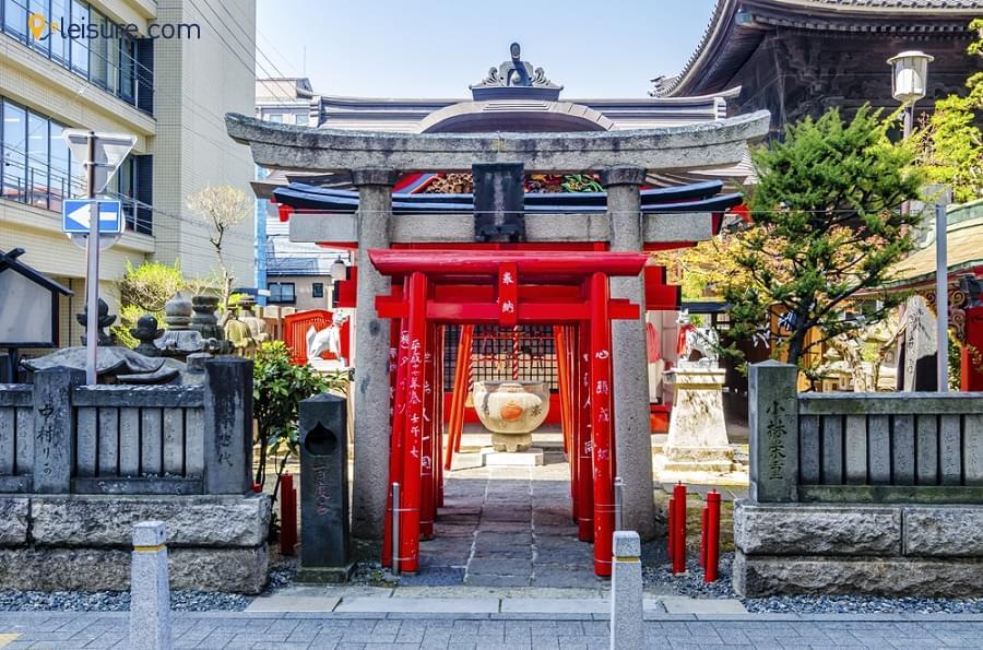 Japan Vacation dsds