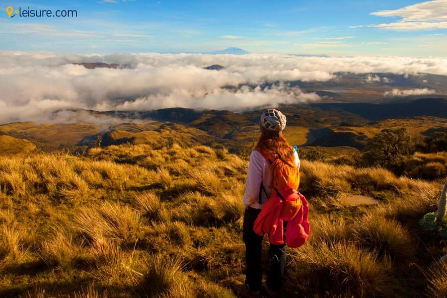 Get Onto A Mesmerizing Ecuador & Colombia Tour This Year End With This Latin America Journey Guide