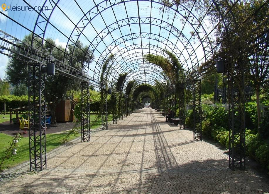 garden p