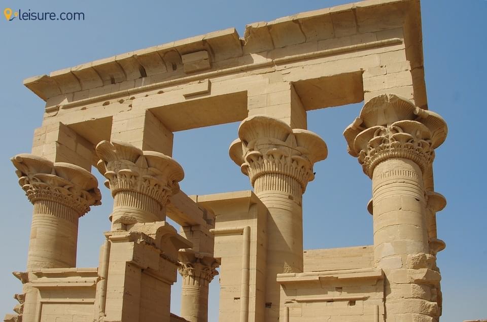 Egyptian 56