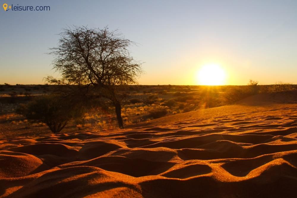 with this Botswana Safari Packag