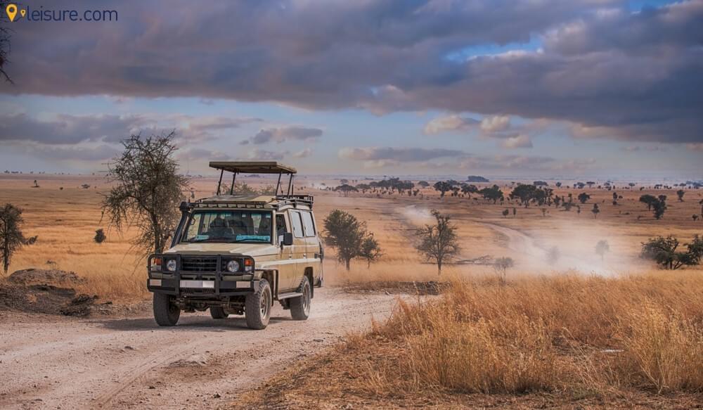 Tanzania Safari 3