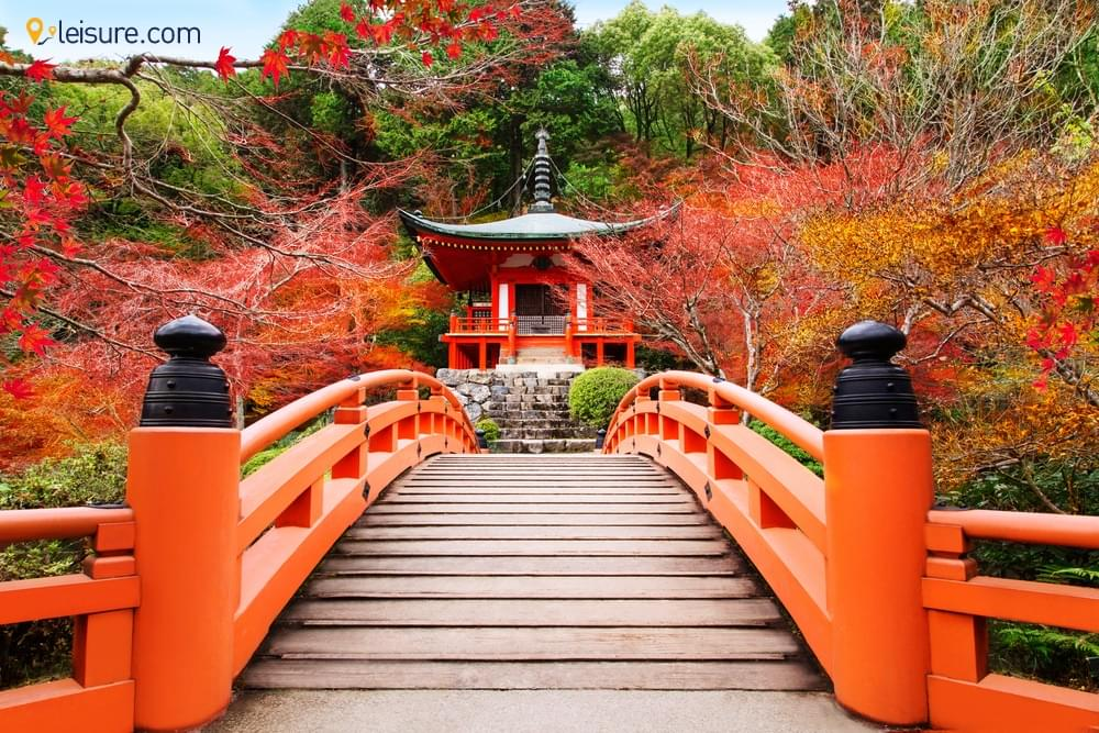Culture and History of Japan