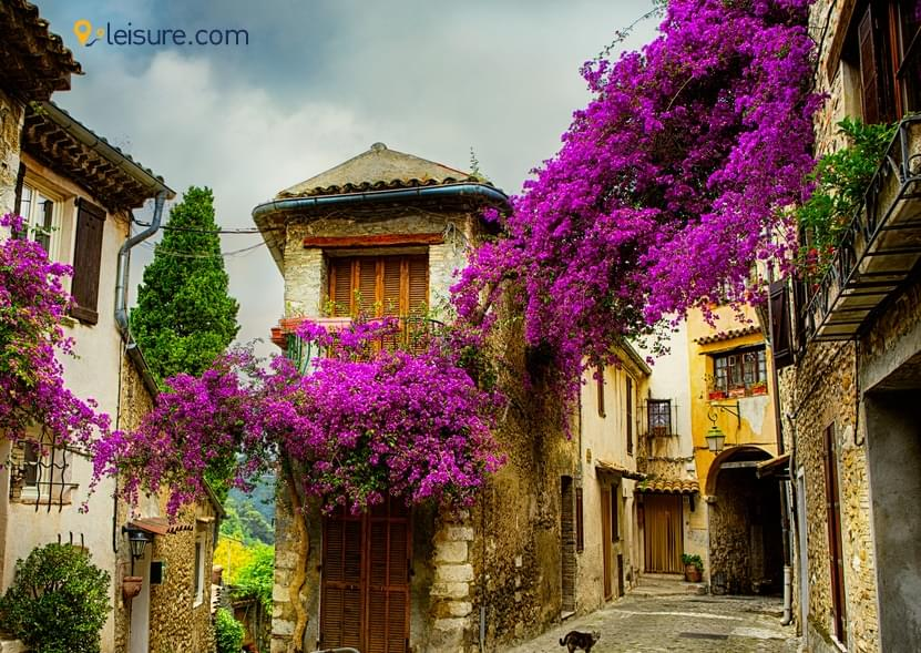 An Incredible Trip to France with an Amazing Travel Agency