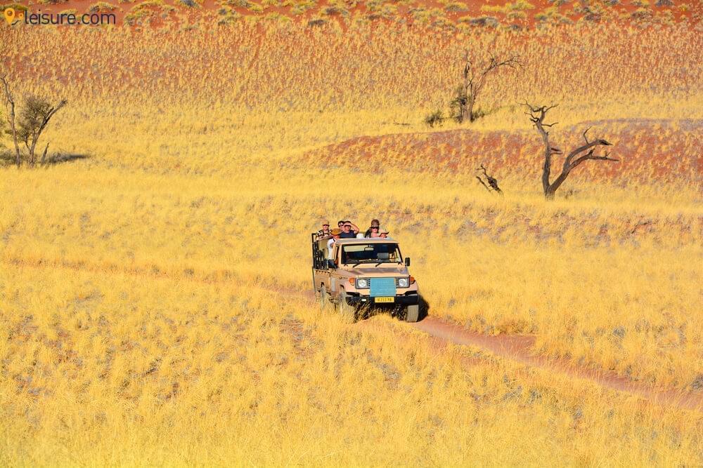 Namibia Safari  2
