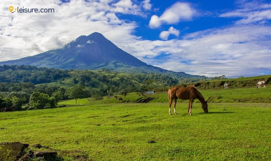 Costa Rica Travel Reviews