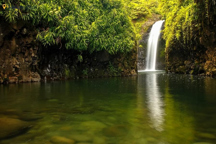Taveuni Fiji Vacation