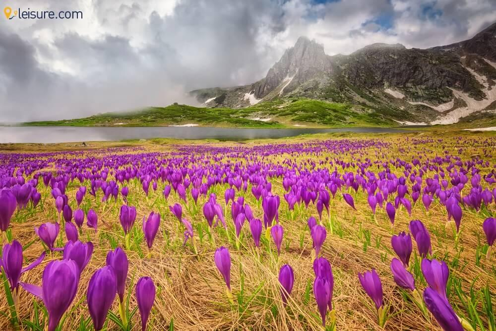 Bulgaria Itineraryss