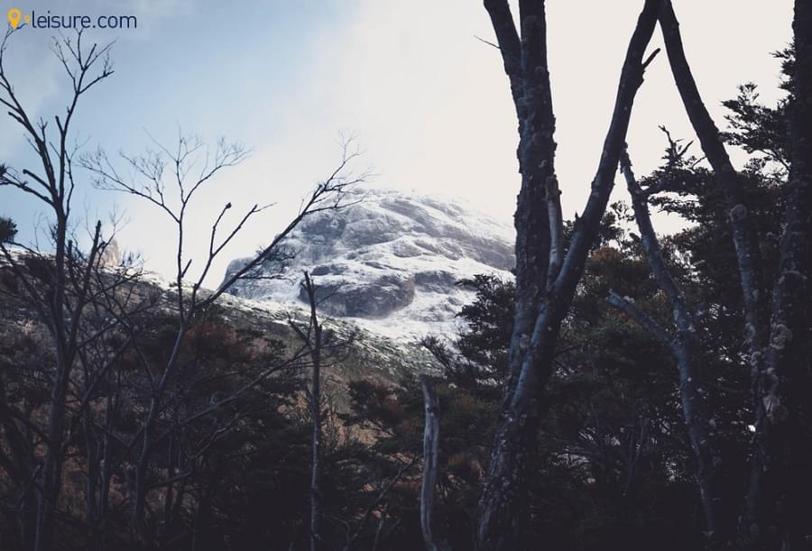 Patagonian Tour