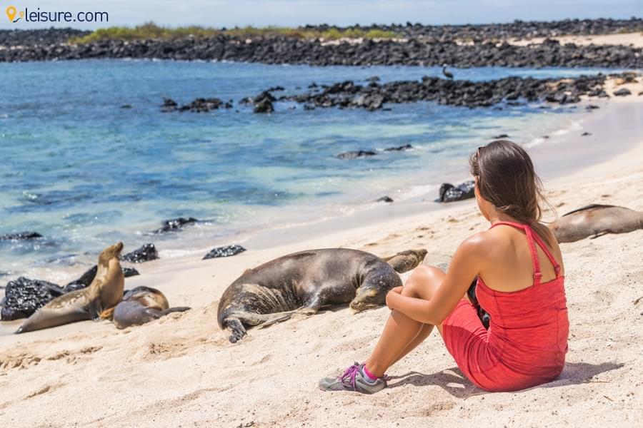 Ecuador & Galapagos vacation