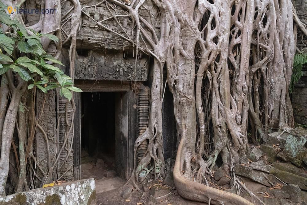 Battambang Tour with ExcursionsV