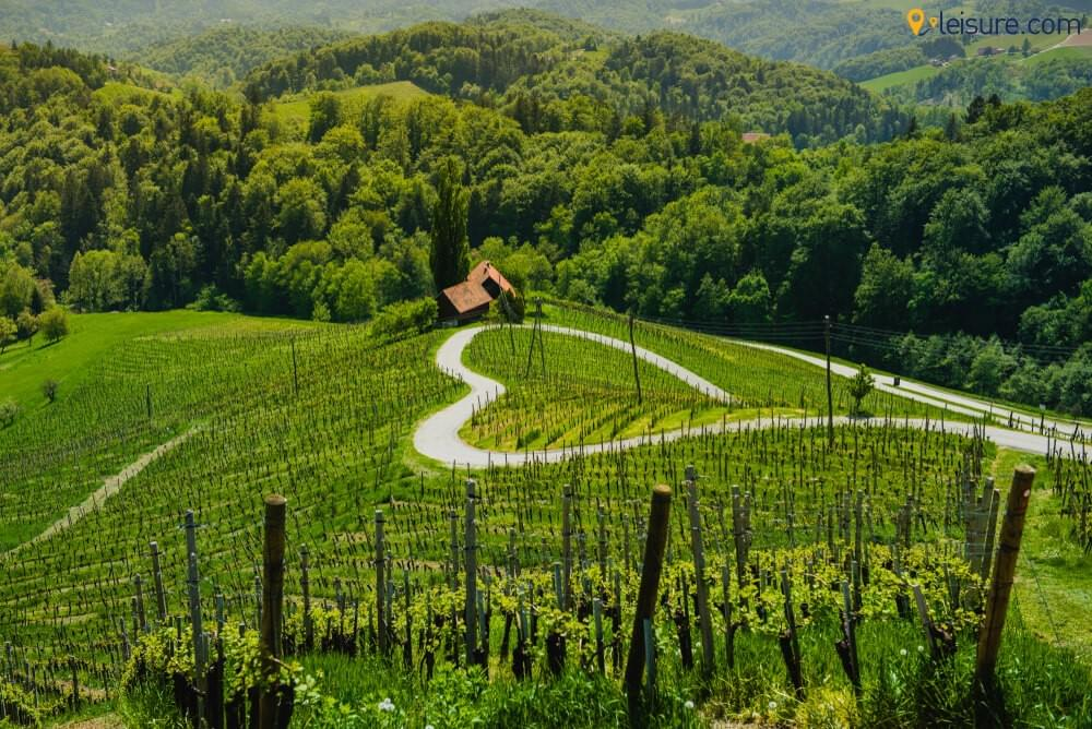 Europe Vacation Package 2019: Explore The Best of Slovenia With Our 7-Days Slovenia Tour
