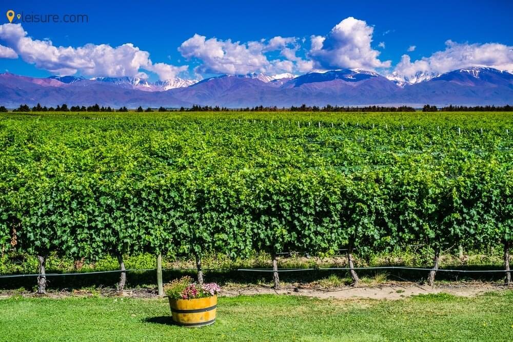 Experiences in Argentina