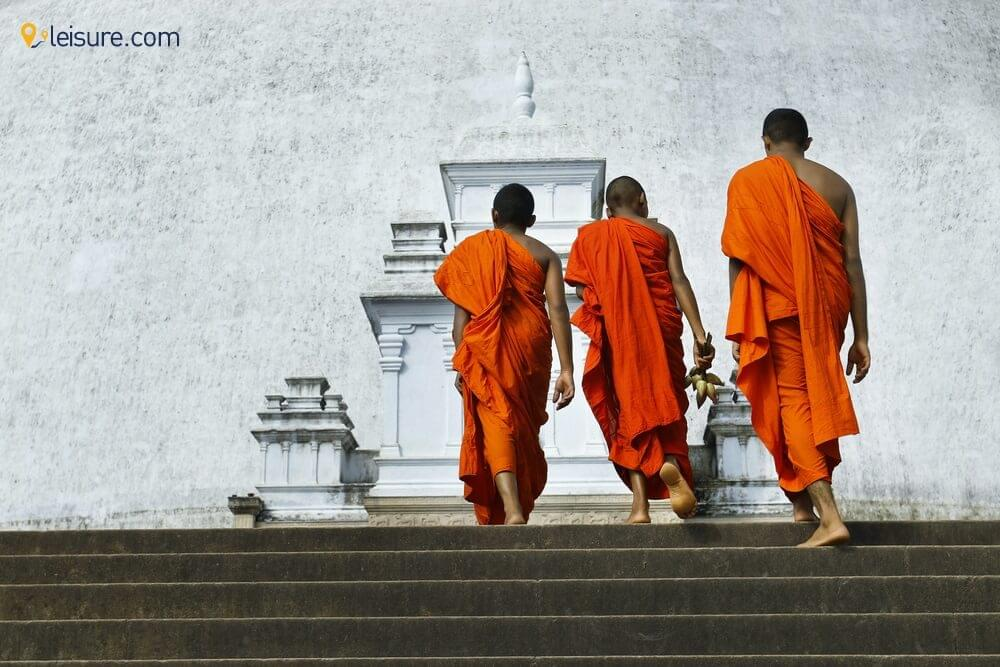 Discover the Confluence of tradition and modernity in this 7-Day Sri Lanka Itinerary