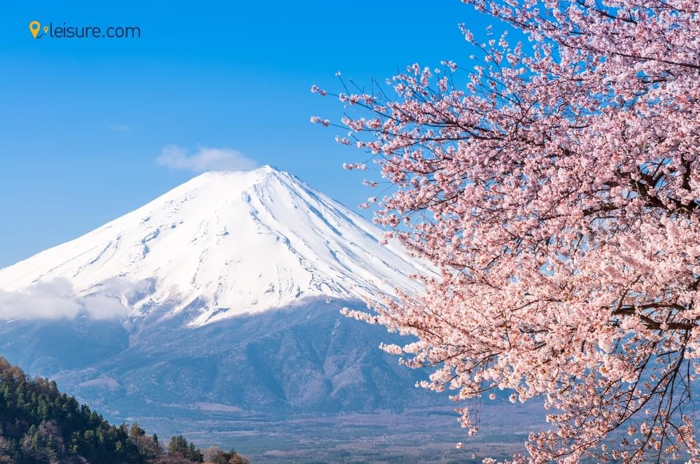 Customized Japan Itinerary df