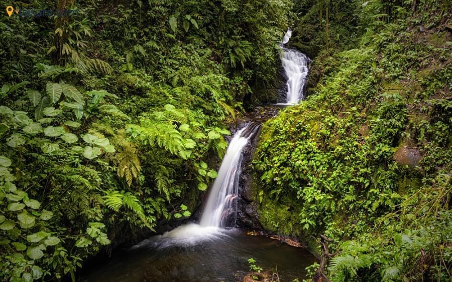 Costa Rica Tours