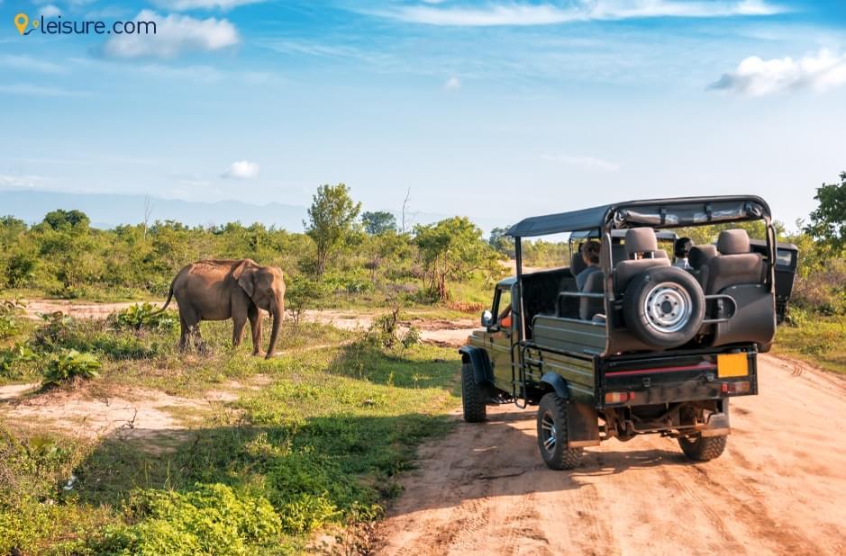 Excellent Experience In Kenya Safari