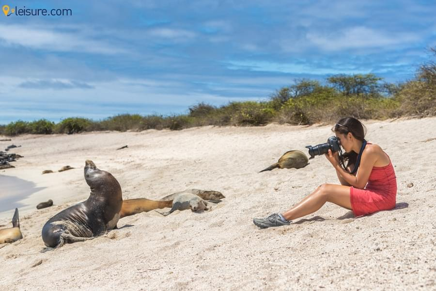 Live Through The Beauty and Authenticity of Galapagos Islands With This Tour Itinerary