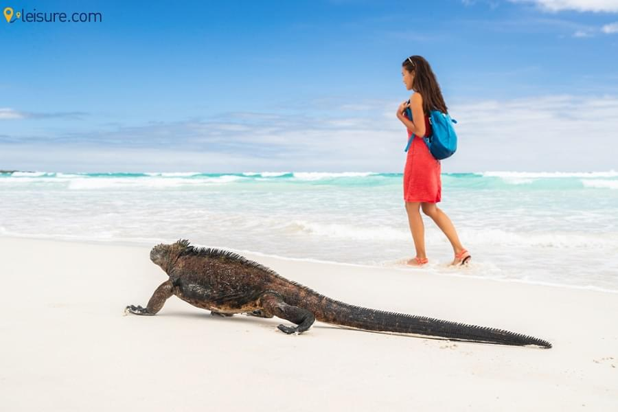 Ecuador & Galapagos Tour: Immerse Yourself into this Natural Splendor