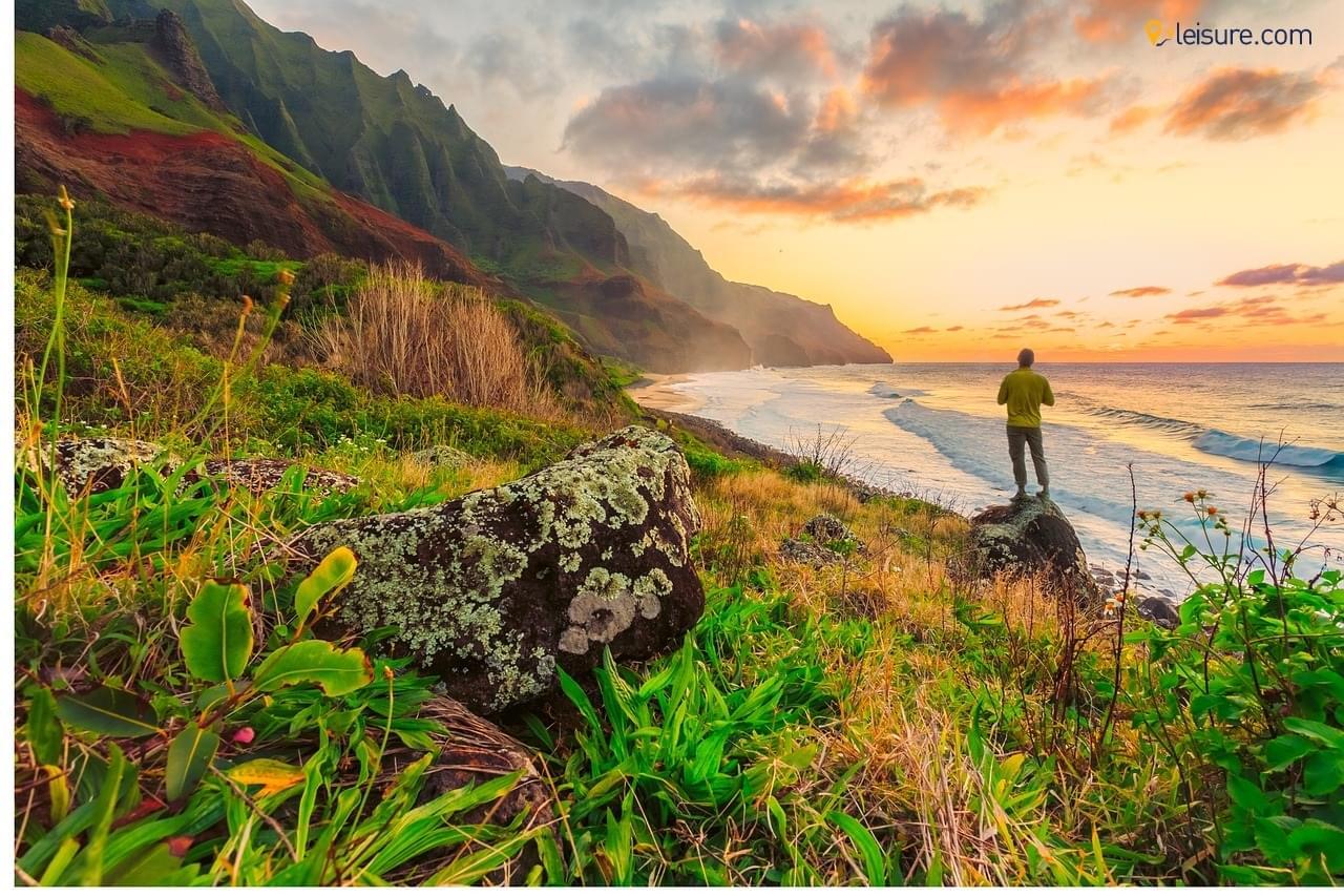 hawaii od