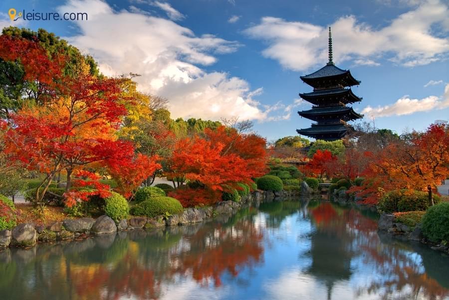 Your Japan Tour d