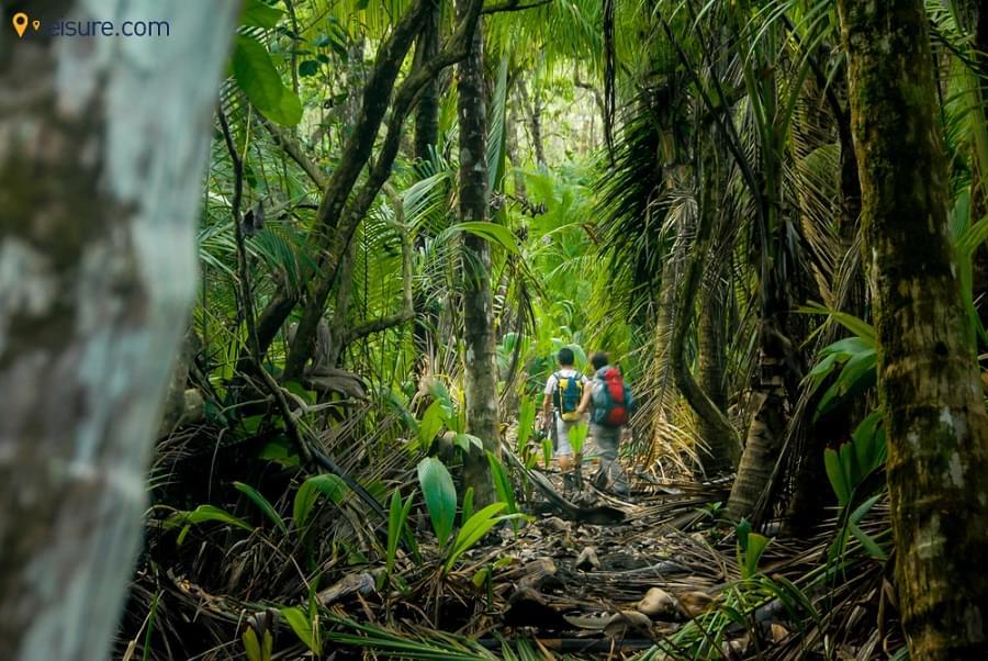 Explore The Best Of Costa Rica In Latin America Escorted Tours