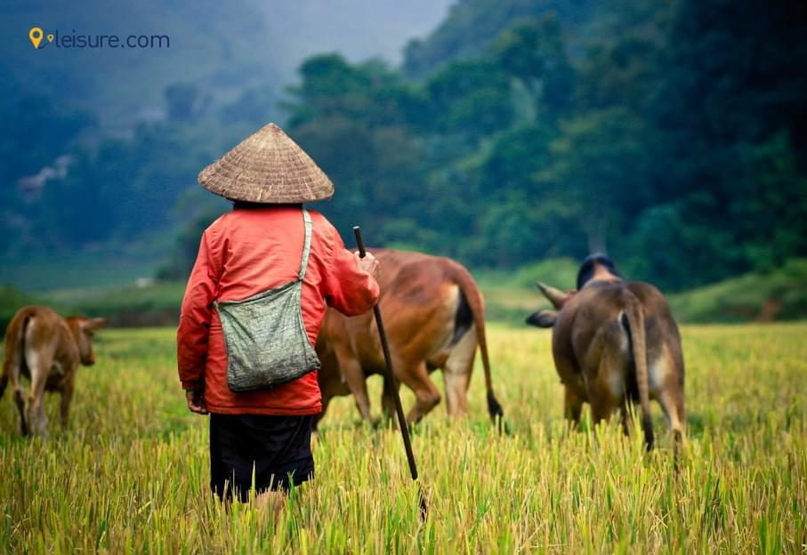 Wonderful Trip To Cambodia