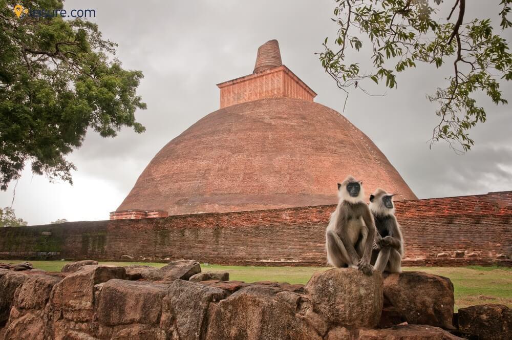 Sri Lanka Itinerar dfy