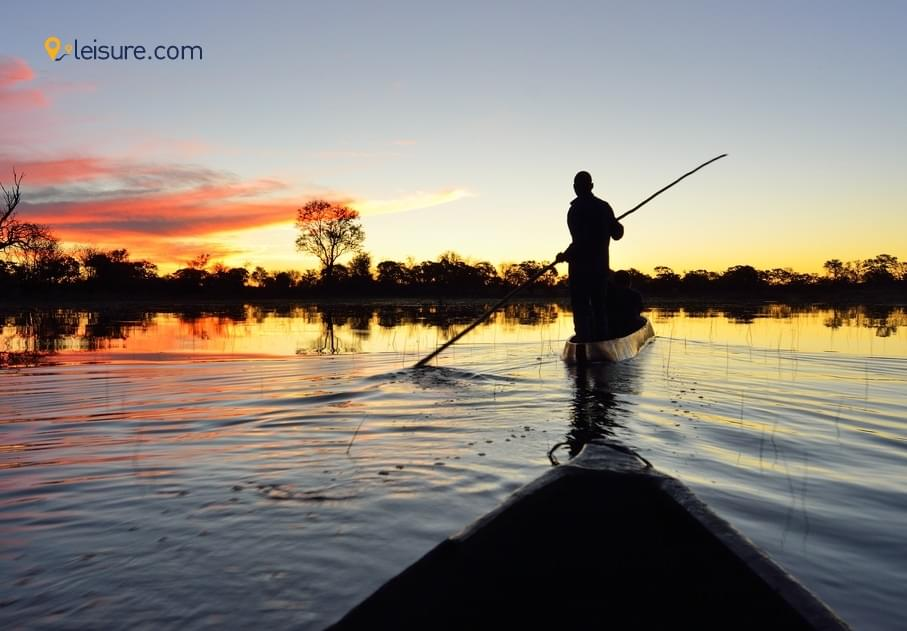 Travel Review: Excellent Tour To Africa Safari, Botswana, South Africa, Zimbabwe..