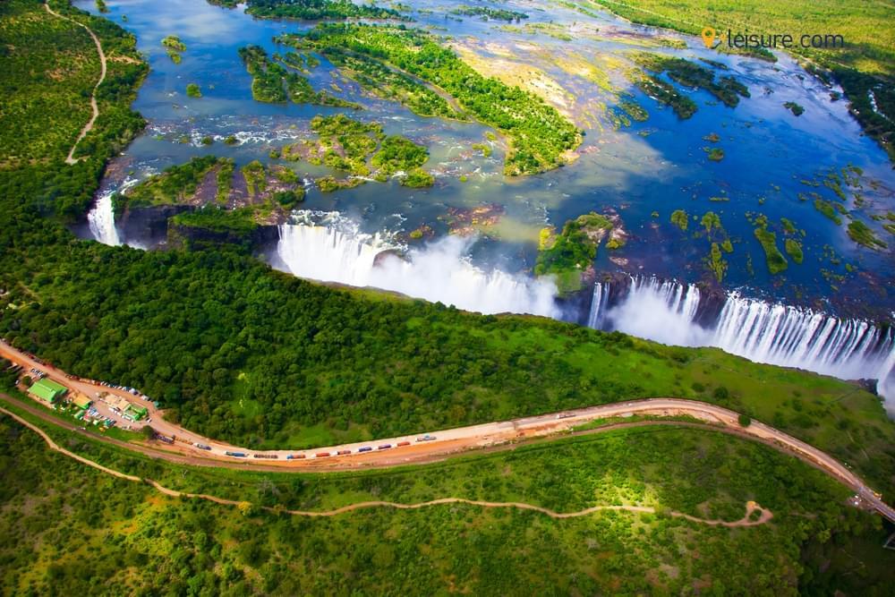 A Mesmerizing Safari