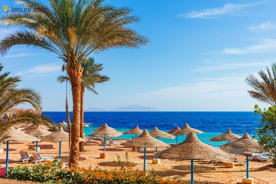 Discover The Best Tourist Destinations in Egypt With This Tour Itinerary