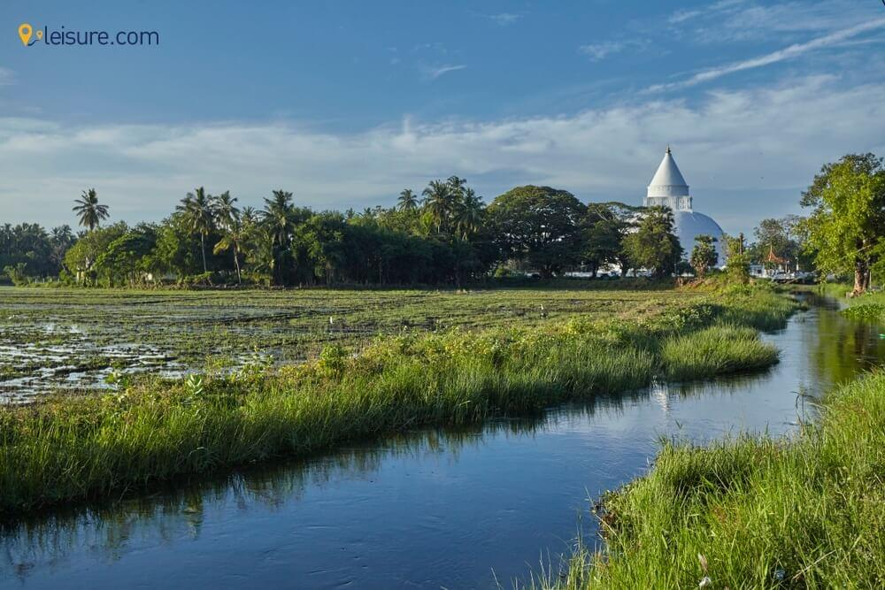 Dive Deep into Sri lanka g